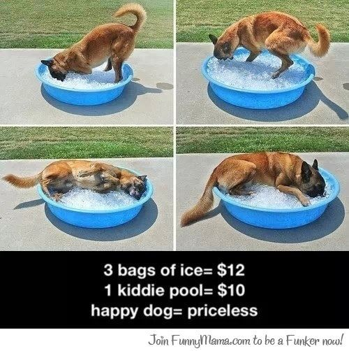 Pure happiness is priceless...