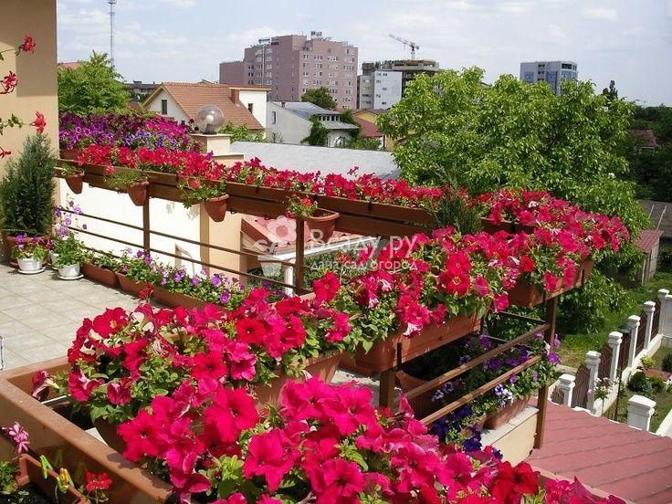 Как задержать лето у себя на балконе