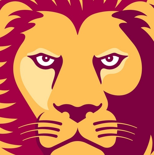 Welcome @Brisbane Lions to Pinterest