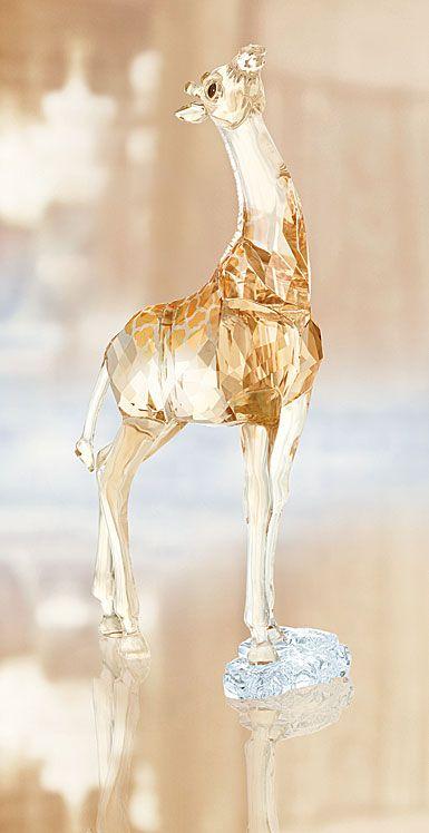 22e2bf86f SCS 2018 Giraffe Baby Swarovski Crystal Figurines, Swarovski Jewelry,  Swarovski Crystals, Giraffe Baby