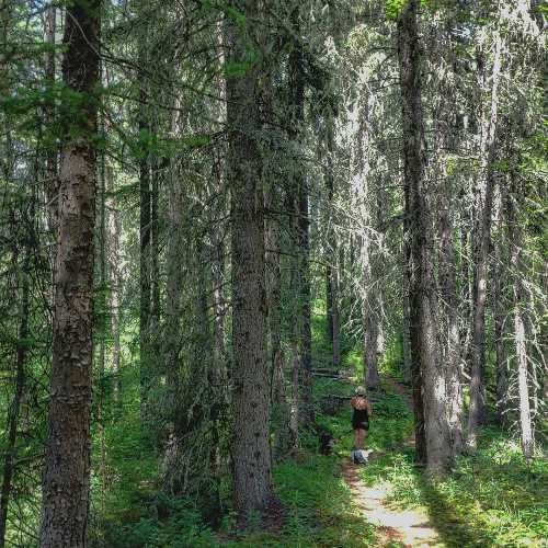5 Hikes For Summer    | Tourism Saskatchewan