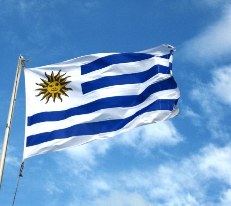 Esta la bandera de Uruguay. Las franjas de la bandera representan los nueve departamentos originales de Uruguay. El Sol de Mayo representa una nueva nación en el mundo. Esta bandera es muy sencillo y no es muy interesante en mi opinion. Me gusta el sol en la bandera. Me recuerda de verano.