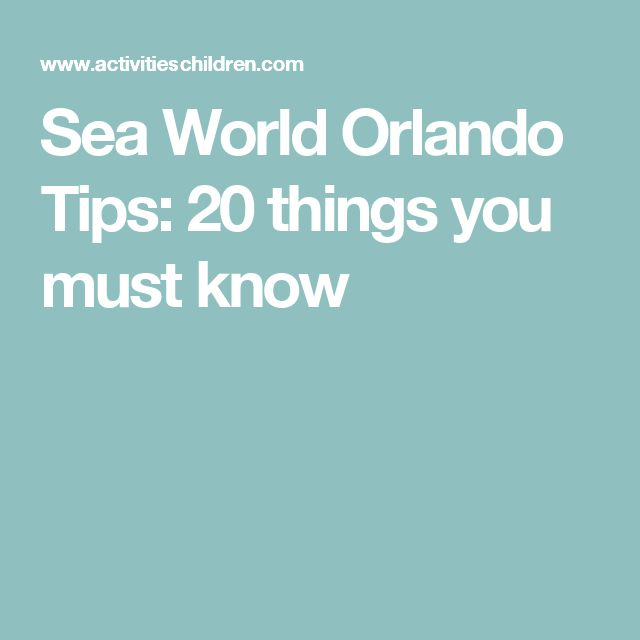 Sea World Orlando Tips: 20 things you must know
