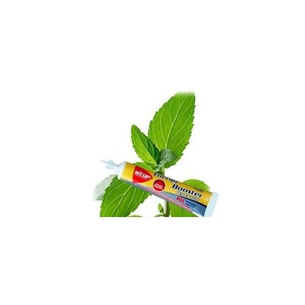 Wcup sport energie gel Energy booster Munt Mint smaak, levering 24 u