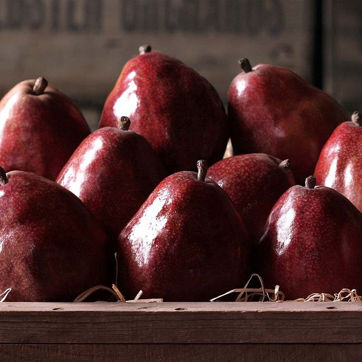 Red d'Anjou Pears - Fresh Columbia Red d'Anjou Pears from The Fruit Company are the perfect gift. A large, stout, white-fleshed pear variety known for their sweet, juicy, brisk flavor.