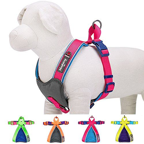 """Blueberry Pet Summer Hope 3M Reflective 5/8"""" Wide* 16.5"""" Neck* 15.5-17.5"""" Chest Fluorescent Pink Padded Dog Harness Vest, Ultra-soft No Pull Blueberry Pet http://www.amazon.com/dp/B010NN8H1M/ref=cm_sw_r_pi_dp_Zu5zwb060Z7Z6"""