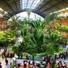Madrid's Atocha Station Doubles as an Indoor Botanical Garden and Turtle Sanctuary Atocha Station Tropical Garden – Inhabitat - Sustainable Design Innovation, Eco Architecture, Green Building