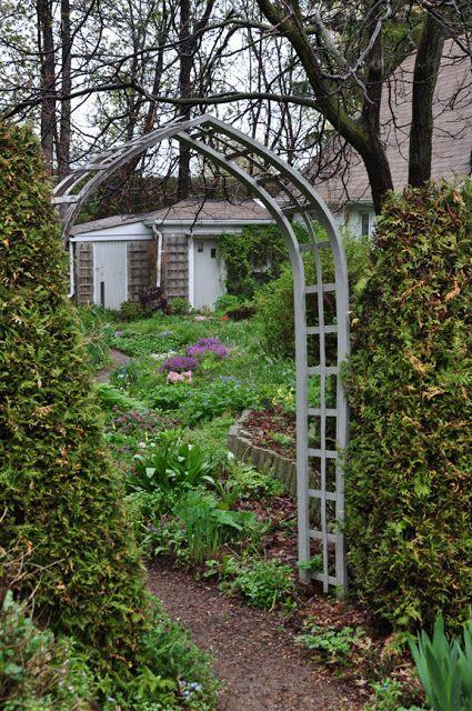 Three Dogs in a Garden: Merlin's Hollow, Aurora Ontario