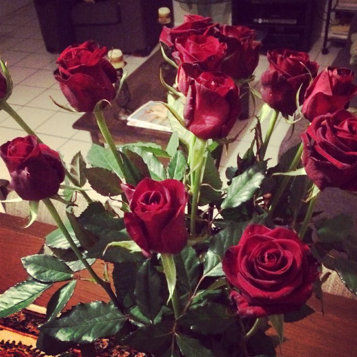12 long stemmed Mothers Day Roses 11/5/2014 From my grandson Alan (Chubb) de Smit