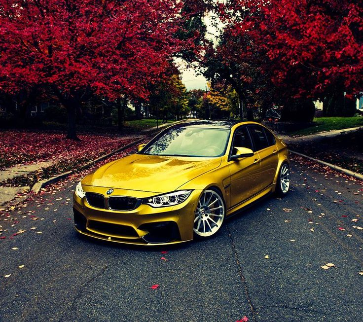 203 Best Images About BMW On Pinterest