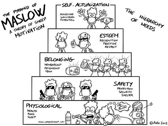 Leadersheep, anto, sheep, leadership, management, belonging, esteem, maslow, motivation, physiological, pyramid of maslow, safety, self-actualization