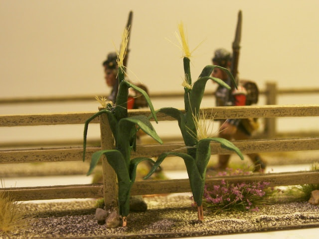 Mini Corn Plant : Dreispitz mike´s miniature wargaming terrain