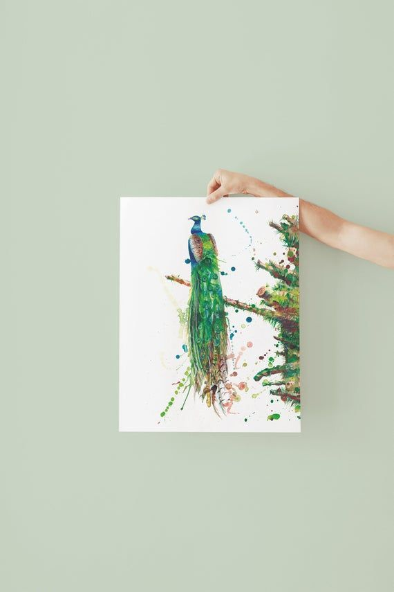 Art Print Peacock Watercolor Painting Autographed Painting