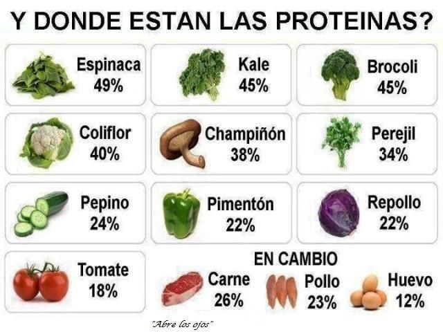 y dónde están las proteinas?