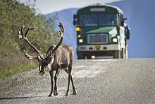Denali National Park and Preserve - Wikipedia