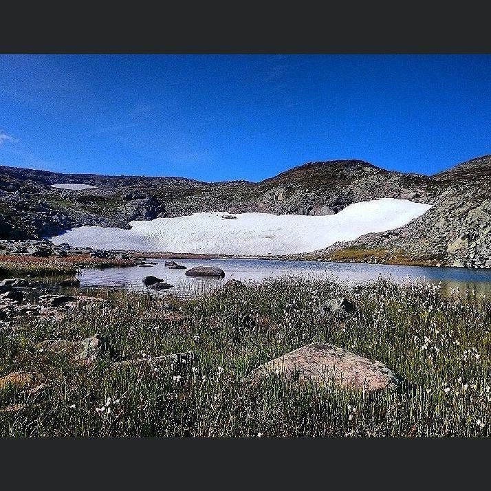 Stille og rolig over Besseggen fredag  #Gjende #Fjellfilmfestivalen #utno #turistforeningen #Jotunheimen #liveterbestute #norsketurbilder #turistforeningen #fjellfolk #utejenter #jenterpåtur #yrno #utetid15 #få15 #nattinaturen #alpinebabes #outdoorlife #mountainhigh #outdoorpassion #getoutandstayout #highcamp #getoutandcamp #mckinley #outdoorbella #outdoorwomen @alpinebabes #hiking #nerverstopexploring #explorenature #in2nature by malifrydenlund
