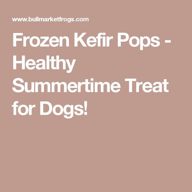Frozen Kefir Pops - Healthy Summertime Treat for Dogs!