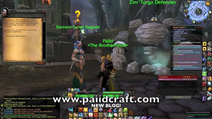 amazing  Paiid | Ding! Level 80 Paladin, Gold Farming tips in World of Warcraft soon and new blog!