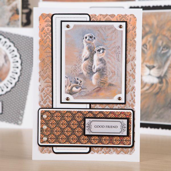 Pollyanna Pickering Sketch Book Chapter 2 World Wildlife Multibuy (374502)…