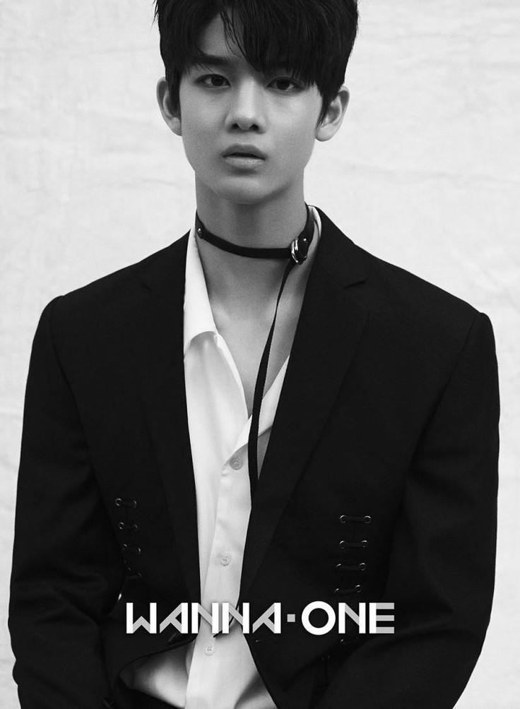 Wanna One Bae Jinyoung