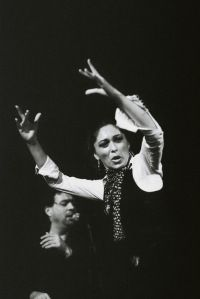 395 Best Flamenco Arte Puro Images On Pinterest Dancing