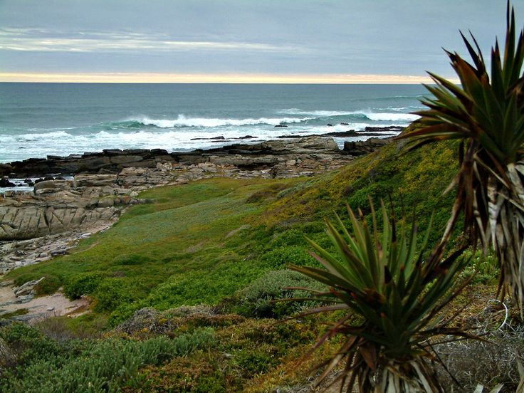 A seascape just south of Port Elizabeth, South Africa.