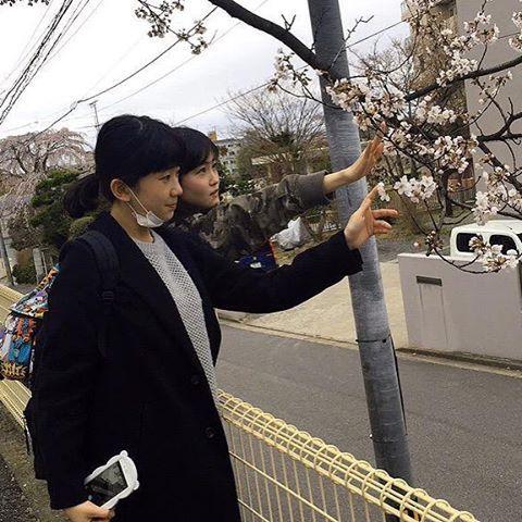 【yuna3339】さんのInstagramをピンしています。 《#せりまな #リトグリ #桜 #芹奈 #manaka》