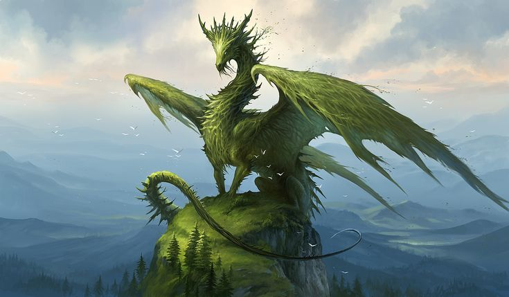 Green Dragon - he seems to be a Forest Realm Dragon :)  I wonder how old he is?