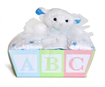 30 best baby shower gift ideas images on pinterest baby shower gift baskets for baby by stork baby gift baskets storkbabygiftbaskets negle Image collections