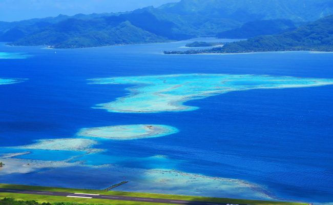 Raiatea- the second largest island in the Society Islands  of French Polynesia- hike to mount teurafaatiu