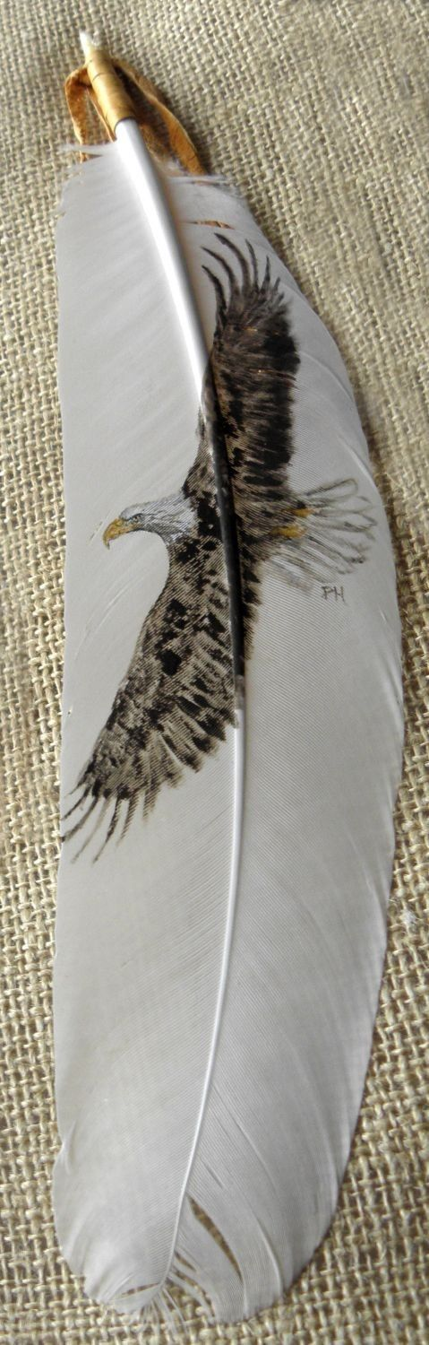 Bald Eagle Flying Painted Feather Framed by patmorrisartist, $65.00 on etsy