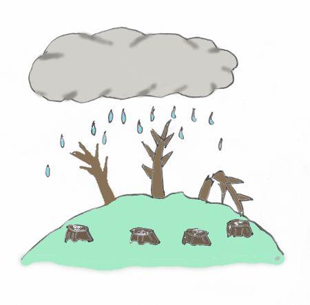 6.Environmental,Air pollution Acid rain   酸性雨