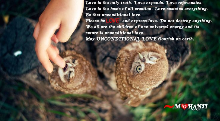 """""""Love is the only truth. Love expands. Love rejuvenates. Love is the basis of all creation. Love sustains everything. Be that unconditional love. Please be LOVE and express love. Do not destroy anything. We are all children of one universal energy and its nature is unconditional love. May UNCONDITIONAL LOVE flourish on earth."""" - Mohanji"""