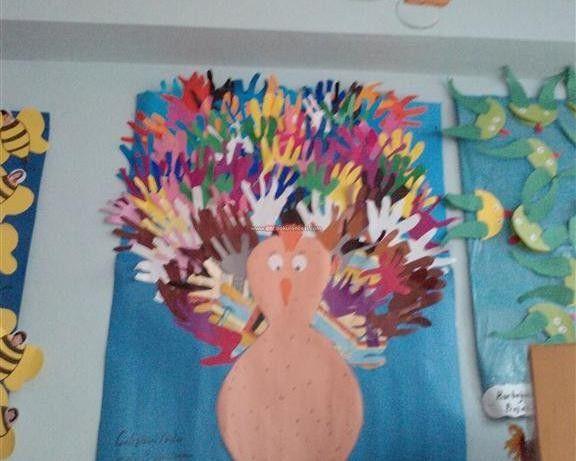 Tavus kuşları sanat etkinlikleri