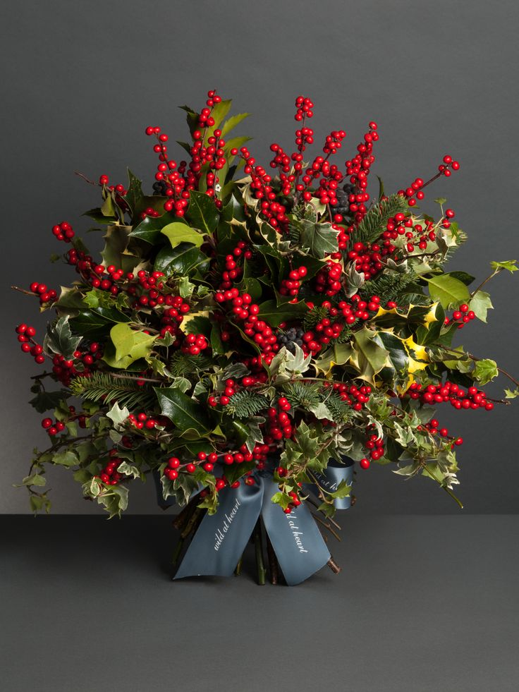 Images about christmas flowers on pinterest