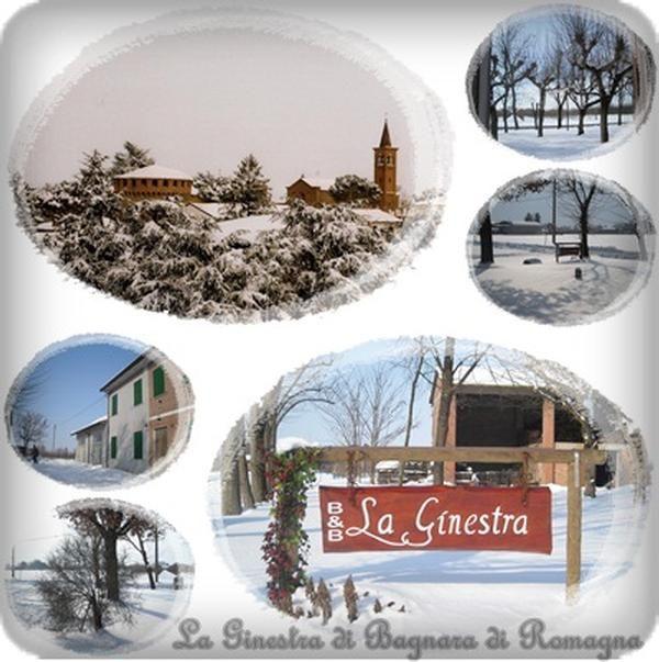 B&B La Ginestra di Bagnara di Romagna Partecipa al B&B Day