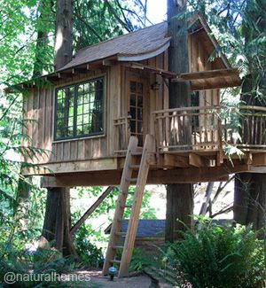 A treehouse village and nature conservancy in Issaquah, USA. More, including video, at www.naturalhomes.org/timeline/treehousepoint.htm