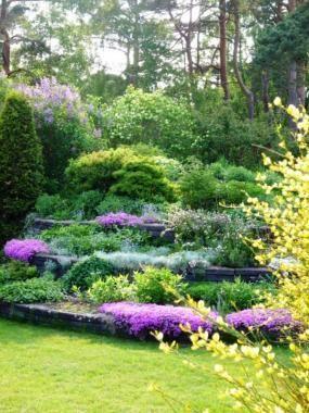19 best Garden Ideas - steep slopes images on Pinterest ... on Steep Hill Backyard Ideas id=27962