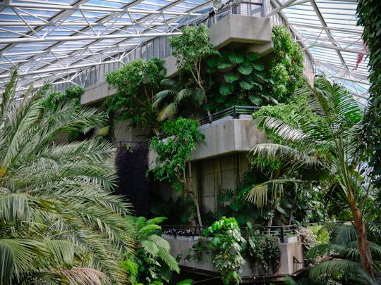 the little-known Barbican Conservatory in London