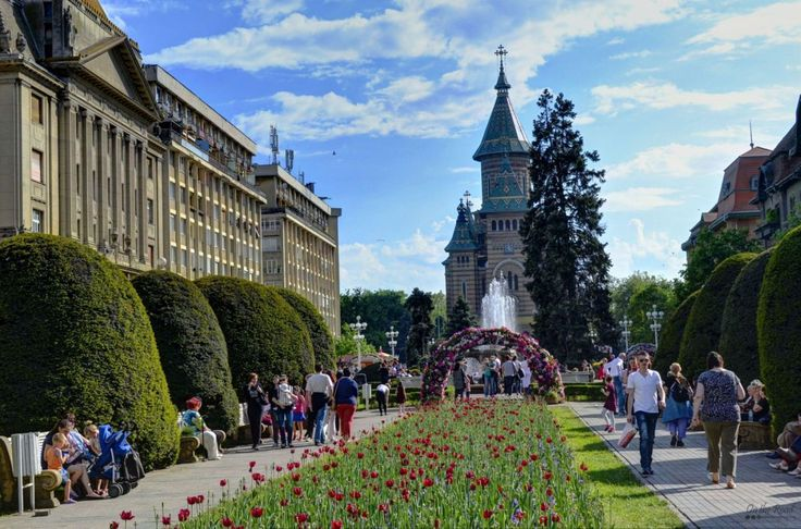 The beautiful Timisoara all decked out in flowers.