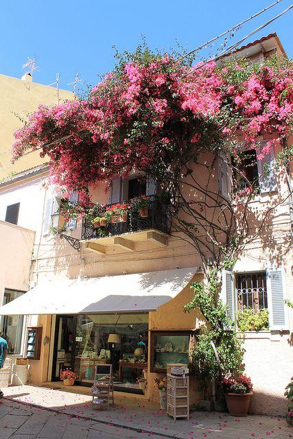 Province of Olbia-Tempio, Maddalena Islands, Sardinia, Italy