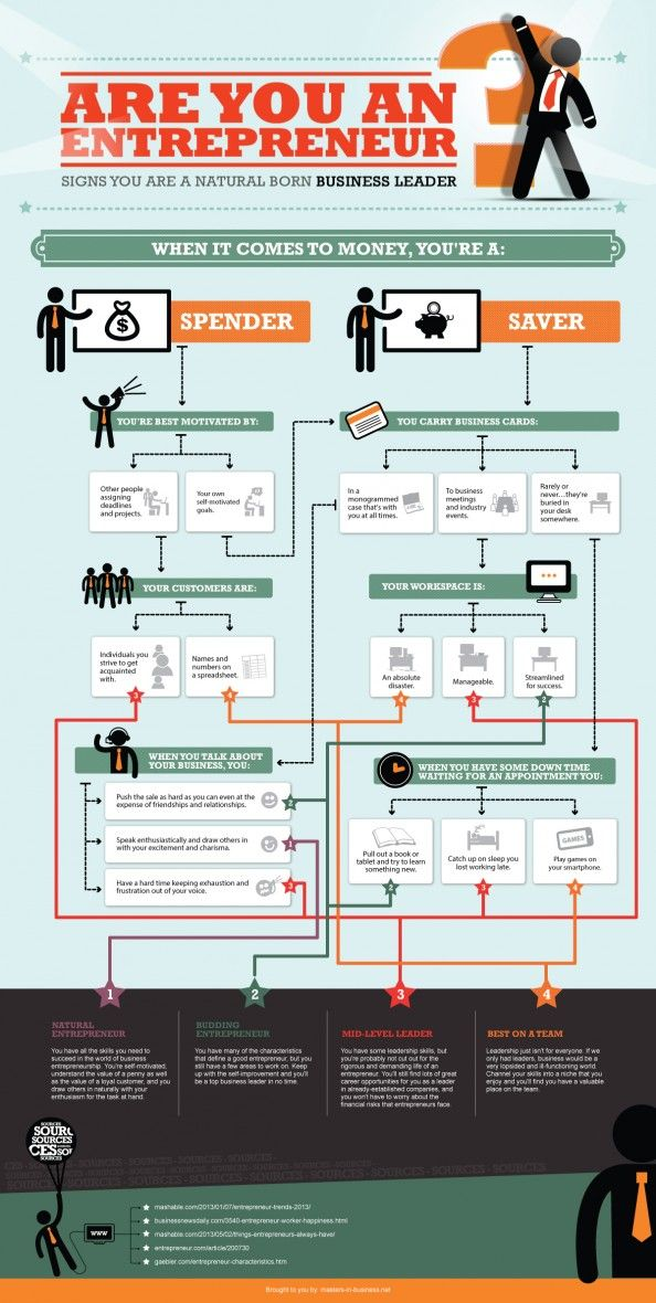 Are You An Entrepreneur? Infographic