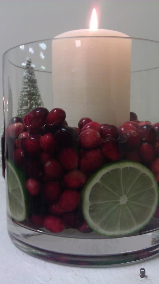 17 best images about christmas on pinterest cranberry for Artificial cranberries for decoration