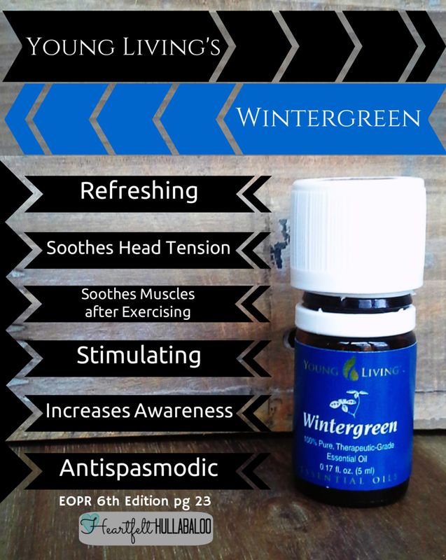 Young Living's Wintergreen. Refreshing, soothes head tension, soothes muscles after exercising, stimulating, increases awareness, antispasmodic.  #essentialoils #undertwentydollars #heartfelthullabaloo