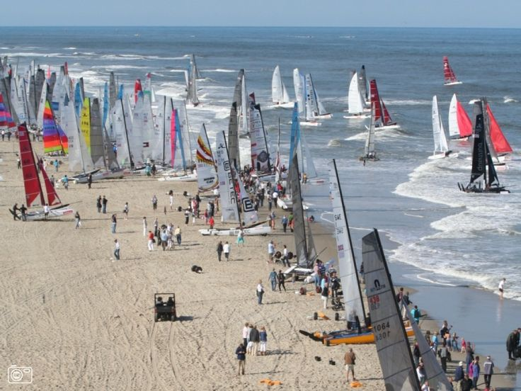 round Texel, the biggest cat race in the world