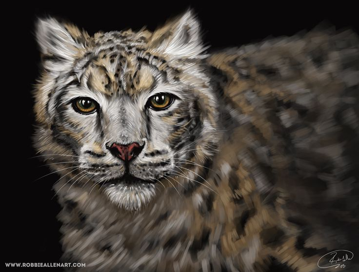 'Snow Leopard'  This is my digital painting of a snow leopard.  #snowleopard #painting #digitalpaintint #art