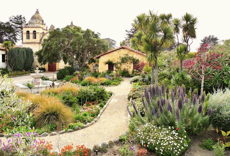How I created my own Mediterranean garden.