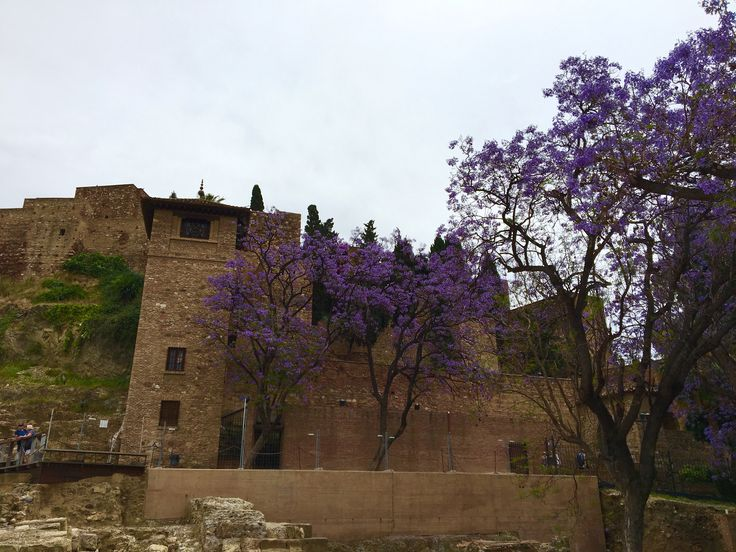 Malaga - L'Alcazaba (nom arabe signifie citadelle) construit entre  1057 et 1063