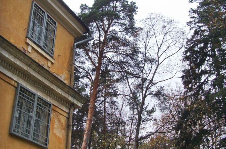 #Arkhangelskoye #homestead #travel #tour (212)
