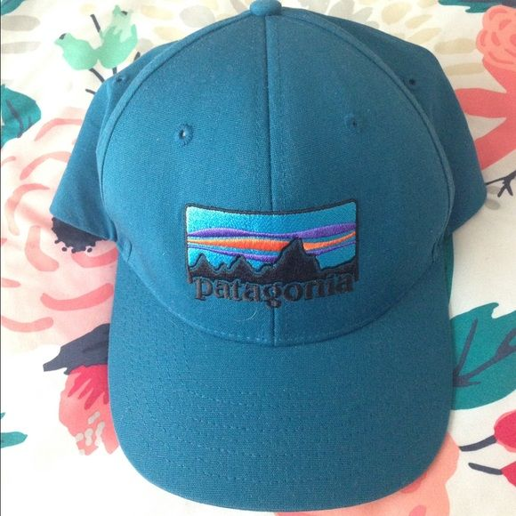 Blue Patagonia SnapBack hat, great condition! Hardly used.